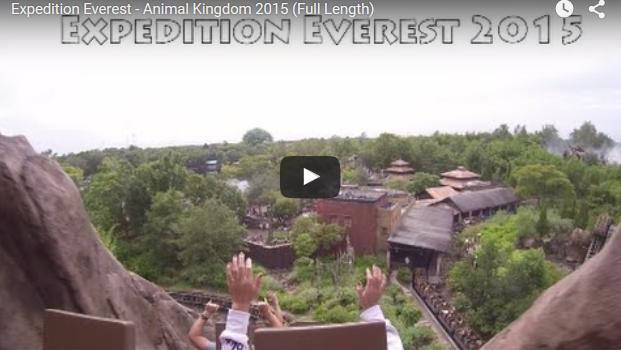expedition-everest-roller-coaster