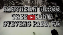 tree-skiing-at-stevens-pass