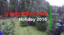 O Christmas Tree GoPro Video
